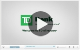 Discover TD eTreasury Online cash management solution